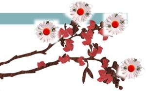 #Sakura_CNeR